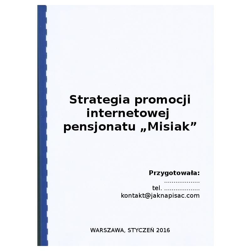 """Strategia promocji internetowej dla pensjonatu """"Misiak"""""""