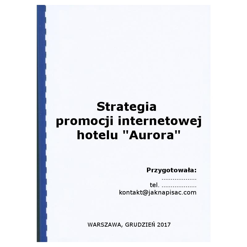 "Strategia promocji internetowej hotelu ""Aurora"""