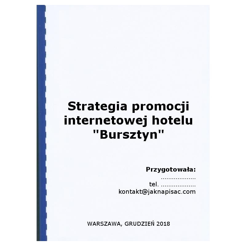 """Strategia promocji internetowej hotelu """"Bursztyn"""""""